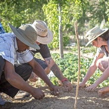Permaculture Design Course for International Development