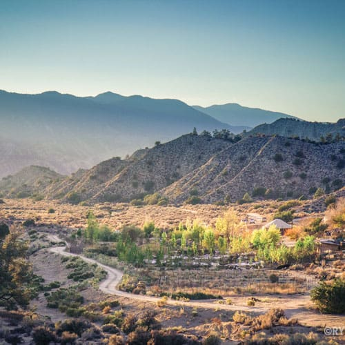 Land Restoration Training