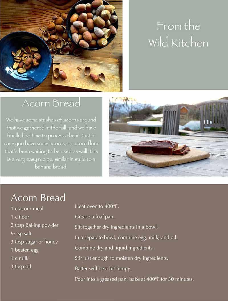 Quail Springs Acorn Bread Recipe